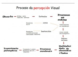procesos-de-percepcion-visual1